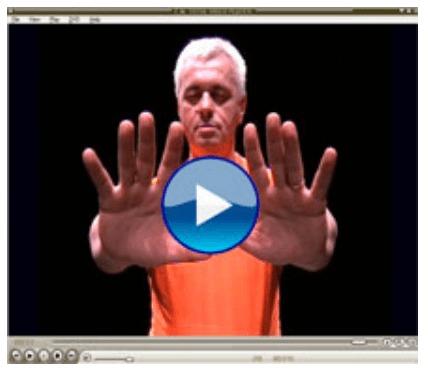 review usui reiki healing master