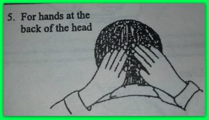 5-back-head.jpg