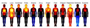 body-parts-and-related-emotions-1.jpg